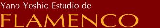 矢野吉峰フラメンコスタジオ 東京都 杉並区 方南町 丸ノ内線 フラメンコ教室 レンタルスタジオ