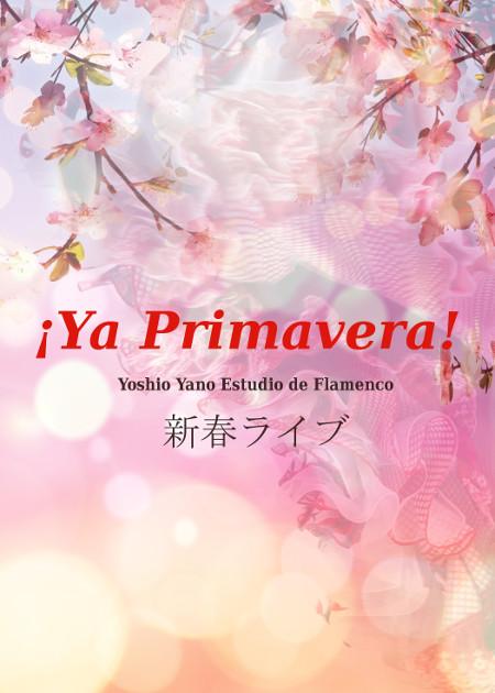 スタジオ新春ライブ ¡ Ya Primavera !
